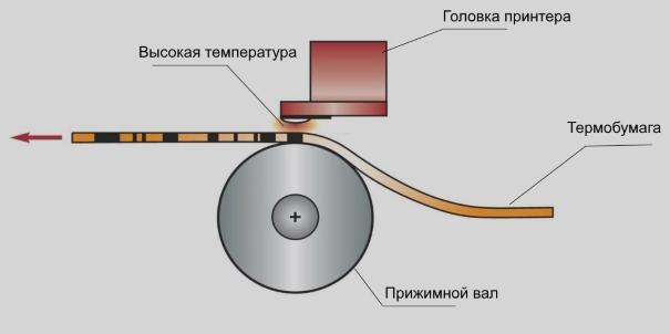 схема прямой термопечати